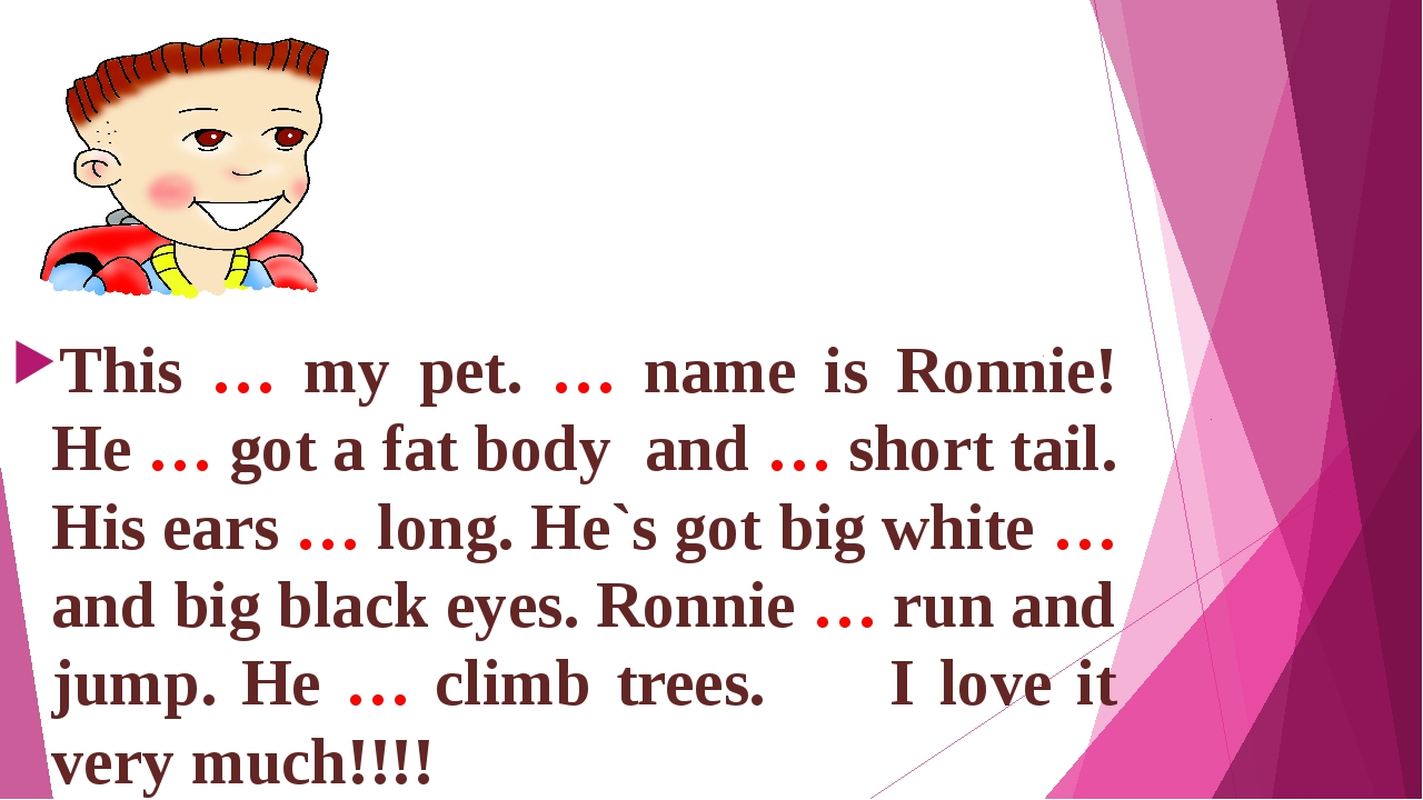 This … my pet. … name is Ronnie! He … got a fat body and … short tail. His e...