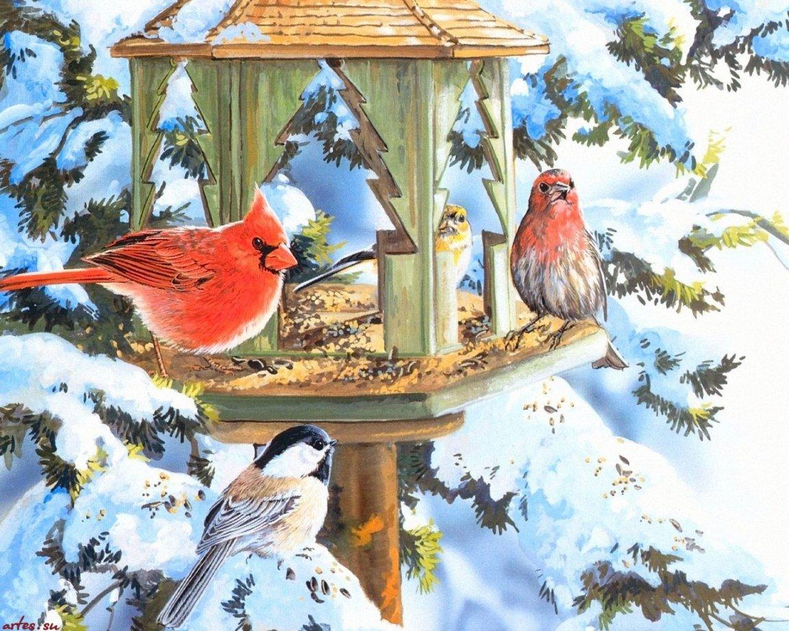 Описание: Фото кормушек для птиц зимой