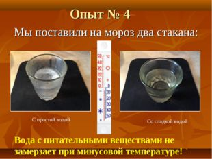 Опыт № 4 Мы поставили на мороз два стакана: Вода с питательными веществами не