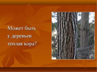 Может быть у деревьев теплая кора?