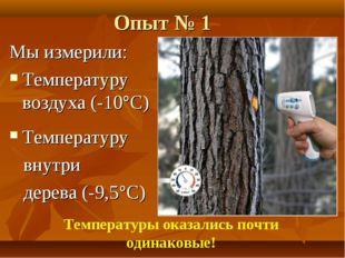 Опыт № 1 Мы измерили: Температуру воздуха (-10°С) Температуру внутри дерева (