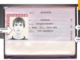 Фото без головного убора Серия паспорта Номер паспорта