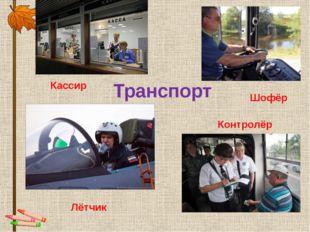 Транспорт Лётчик Шофёр Кассир Контролёр