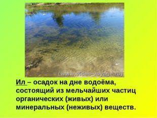 Ил – осадок на дне водоёма, состоящий из мельчайших частиц органических (живы