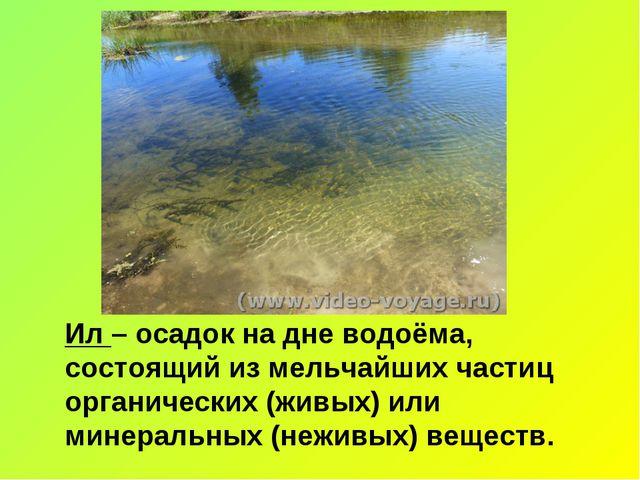 Ил – осадок на дне водоёма, состоящий из мельчайших частиц органических (живы...