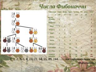Числа Фибоначчи 1, 1, 2, 3, 5, 8, 13, 21, 34, 55, 89, 144, … - последовательн