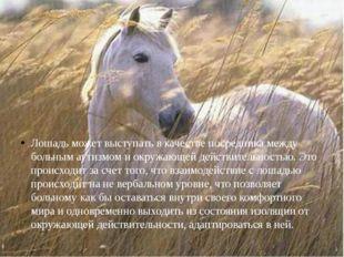 Лошадь может выступать в качестве посредника между больным аутизмом и окружаю