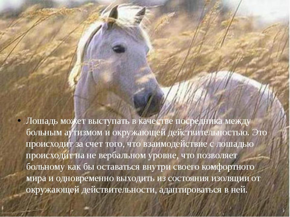 Лошадь может выступать в качестве посредника между больным аутизмом и окружаю...