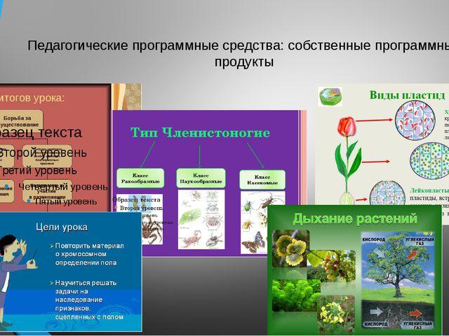 Педагогические программные средства: собственные программные продукты