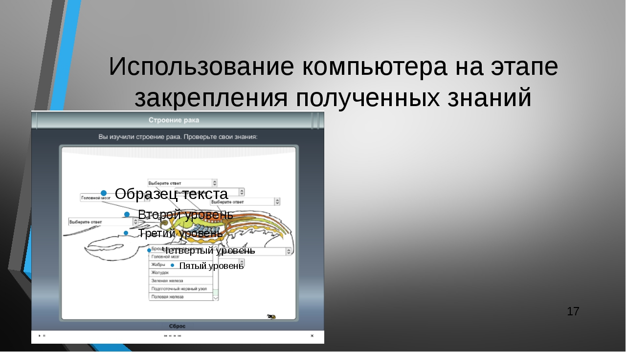 Использование компьютера на этапе закрепления полученных знаний
