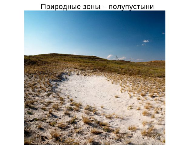 Природные зоны – полупустыни
