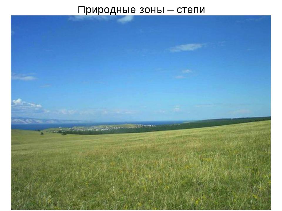 Природные зоны – степи
