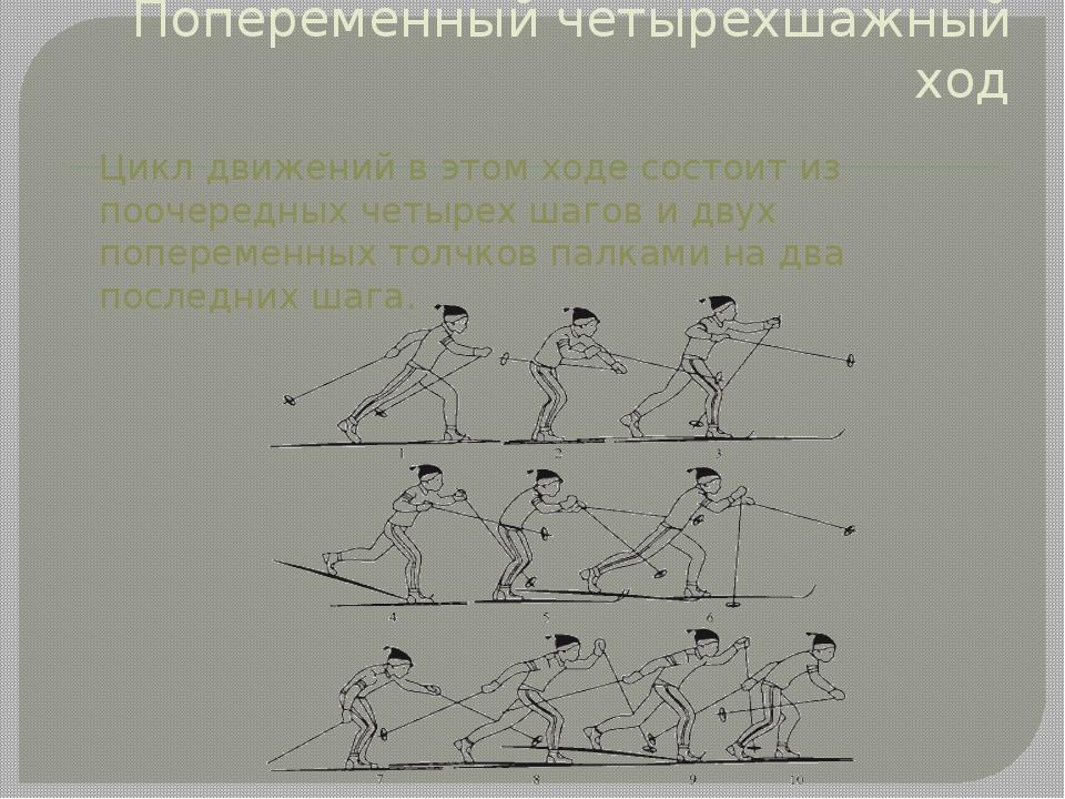 Попеременный четырехшажный ход Цикл движений в этом ходе состоит из поочередн...