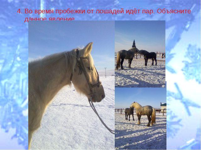 4. Во время пробежки от лошадей идёт пар. Объясните данное явление.