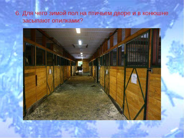 6. Для чего зимой пол на птичьем дворе и в конюшне засыпают опилками?