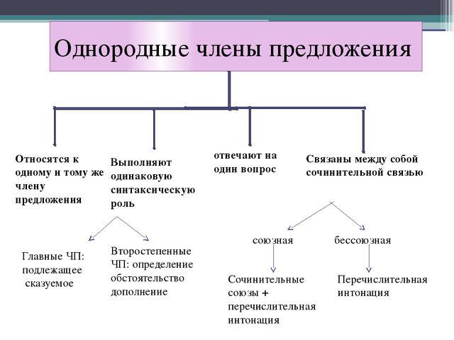 Однородные члены предложения Относятся к одному и тому же члену предложения В...