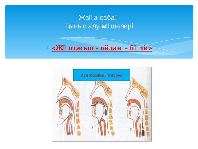 Жаңа сабақ Тыныс алу мүшелері «Жұптасып - ойлан - бөліс»