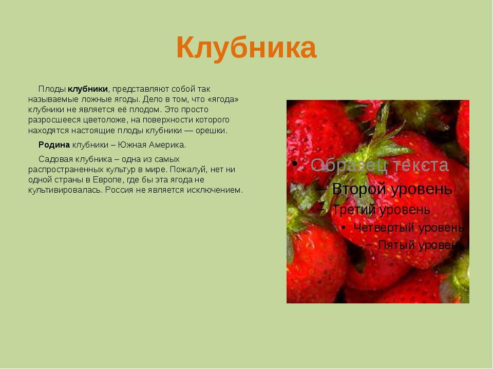 Клубника плод или ягода