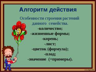Алгоритм действия Особенности строения растений данного семейства. -количеств