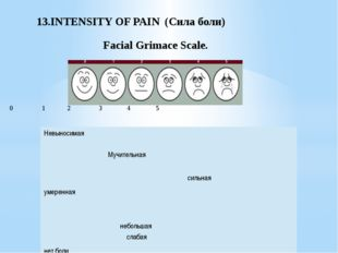 13.INTENSITY OF PAIN (Cила боли) Facial Grimace Scale. 0 1 2 3 4 5 Невыносим