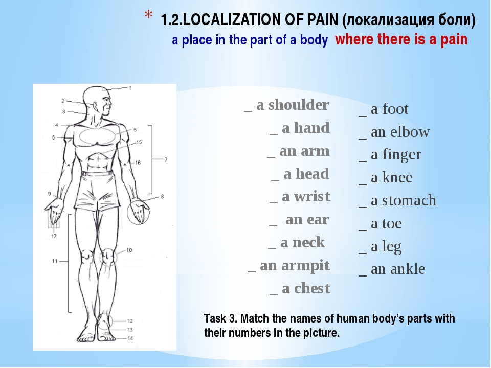 1.2.LOCALIZATION OF PAIN (локализация боли) a place in the part of a body whe...