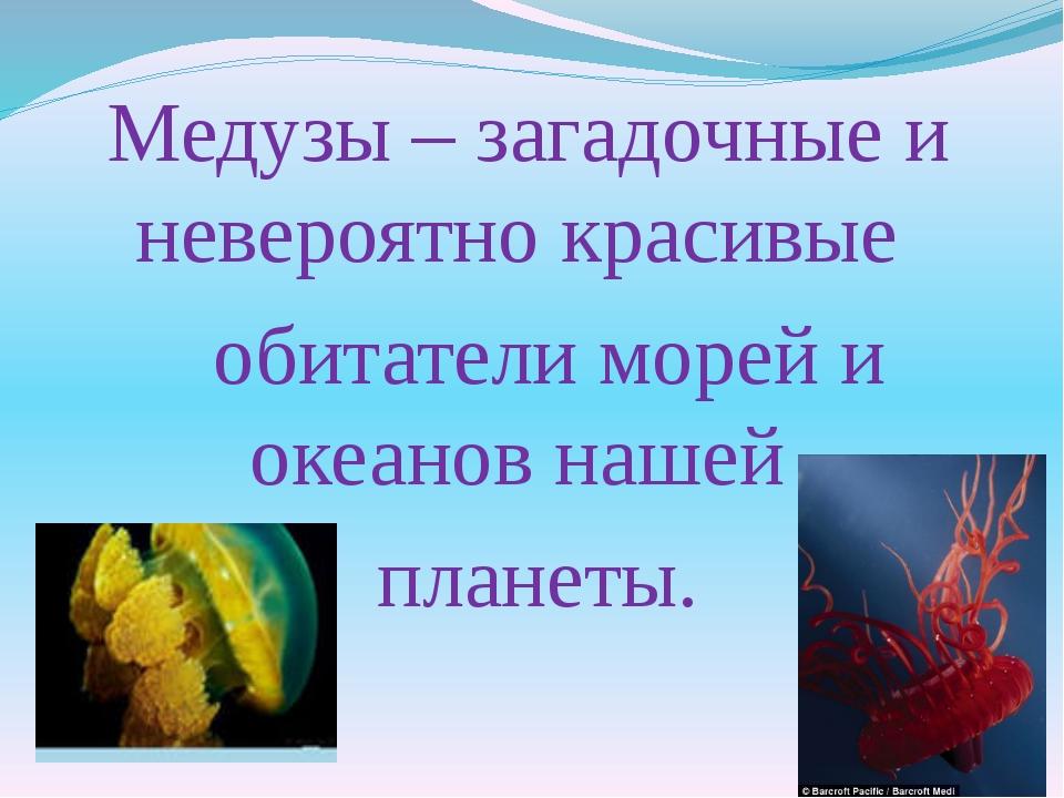 Медузы – загадочные и невероятно красивые обитатели морей и океанов нашей пла...