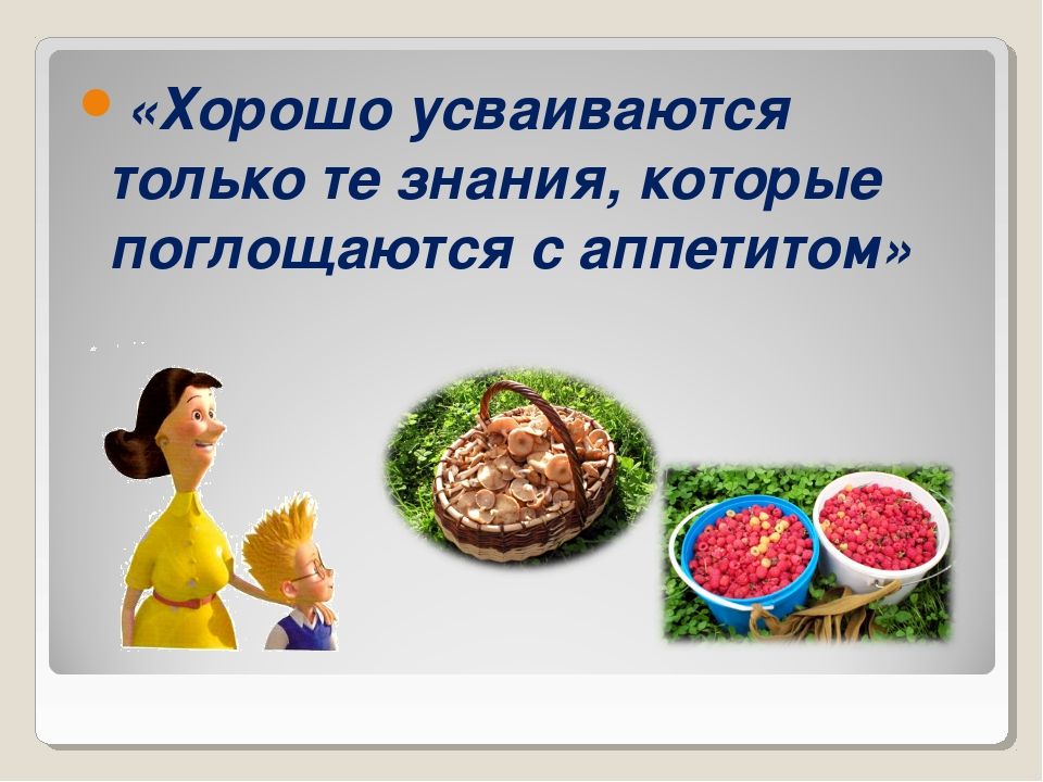 «Хорошо усваиваются только те знания, которые поглощаются с аппетитом»