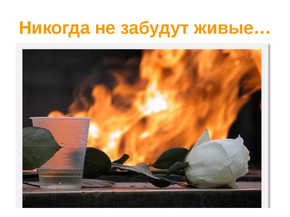 Никогда не забудут живые…