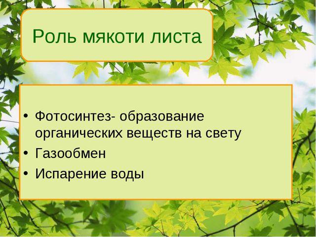 Фотосинтез- образование органических веществ на свету Газообмен Испарение во...