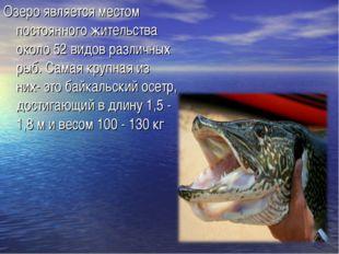 Озеро является местом постоянного жительства около 52 видов различных рыб. Са