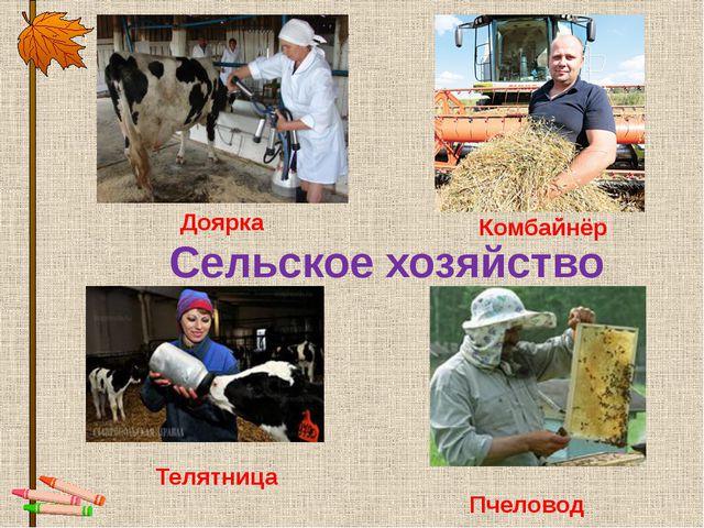 Сельское хозяйство Доярка Комбайнёр Телятница Пчеловод