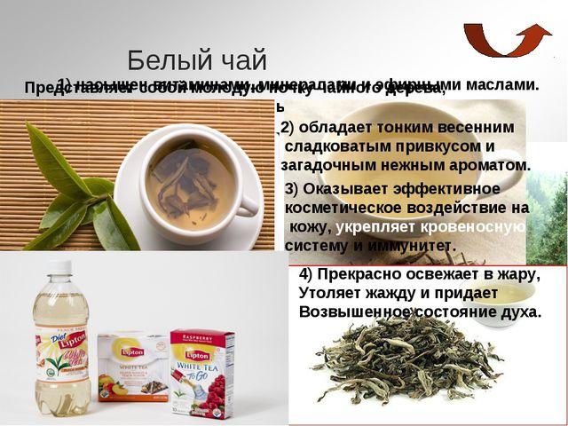 Белый чай Представляет собой молодую почку чайного дерева, обильно покрытую г...