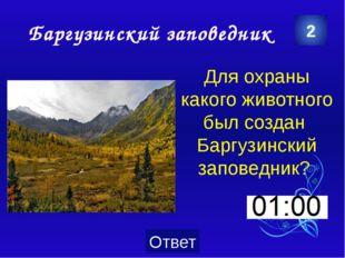 Озеро Байкал 5 Какова максимальная глубина озера Байкал?  Категория Ваш вопр