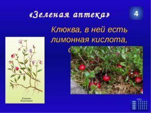 http://img.2r.ru/geo_objects/thumbs/570x380/2013/08/4e5004e1ddeca2791a8f13c8