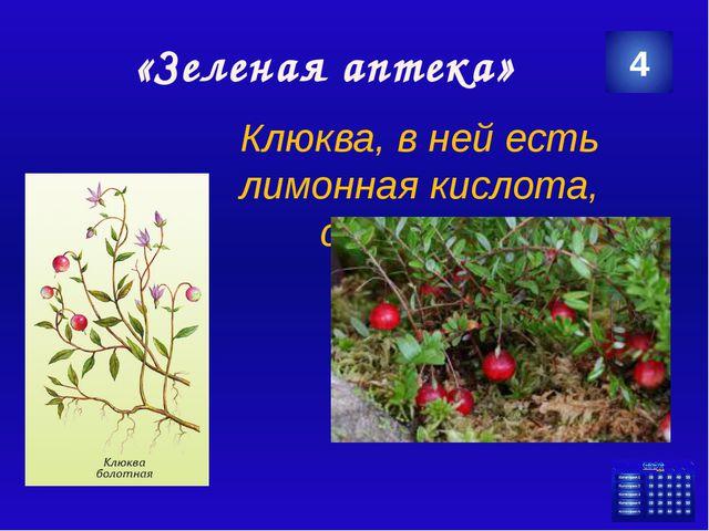 http://img.2r.ru/geo_objects/thumbs/570x380/2013/08/4e5004e1ddeca2791a8f13c8...