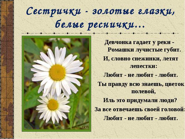 Сестрички - золотые глазки, белые реснички… Девчонка гадает у реки - Ромашки...
