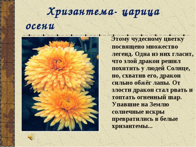 Хризантема- царица осени Этому чудесному цветку посвящено множество легенд....