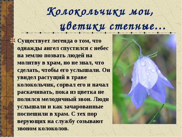Колокольчики мои, цветики степные… Существует легенда о том, что однажды анг...