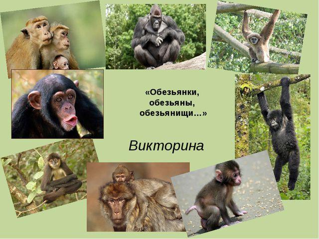 «Обезьянки, обезьяны, обезьянищи…» Викторина