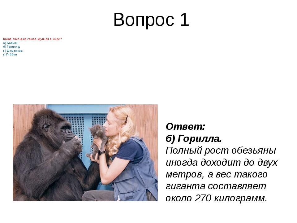 Вопрос 1 Какаяобезьянасамая крупная в мире? а) Бабуин; б) Горилла; в) Шимпа...