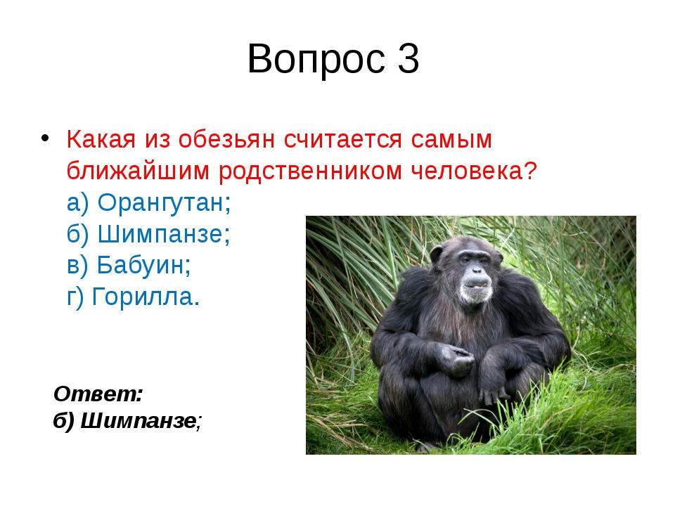 Вопрос 3 Какая изобезьянсчитается самым ближайшим родственником человека? а...