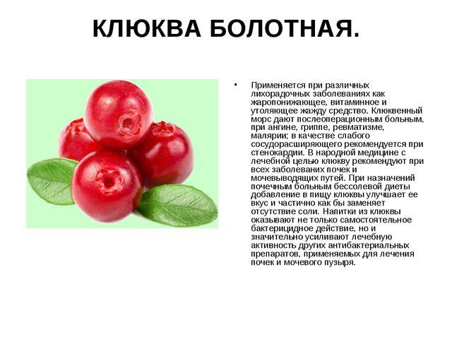 КЛЮКВА БОЛОТНАЯ. Применяется при различных лихорадочных заболеваниях как жаро...