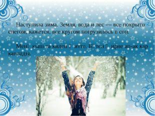 Наступила зима. Земля, вода и лес — все покрыто снегом, кажется, все кругом п