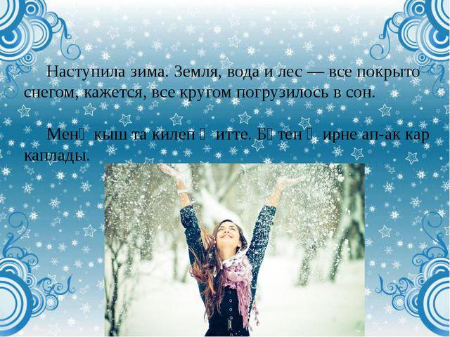 Наступила зима. Земля, вода и лес — все покрыто снегом, кажется, все кругом п...
