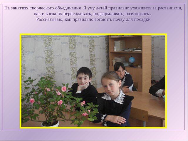 На занятиях творческого объединения Я учу детей правильно ухаживать за растен...