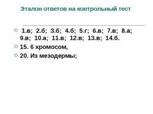 Эталон ответов на контрольный тест 1.в; 2.б; 3.б; 4.б; 5.г; 6.в; 7.в; 8.а; 9