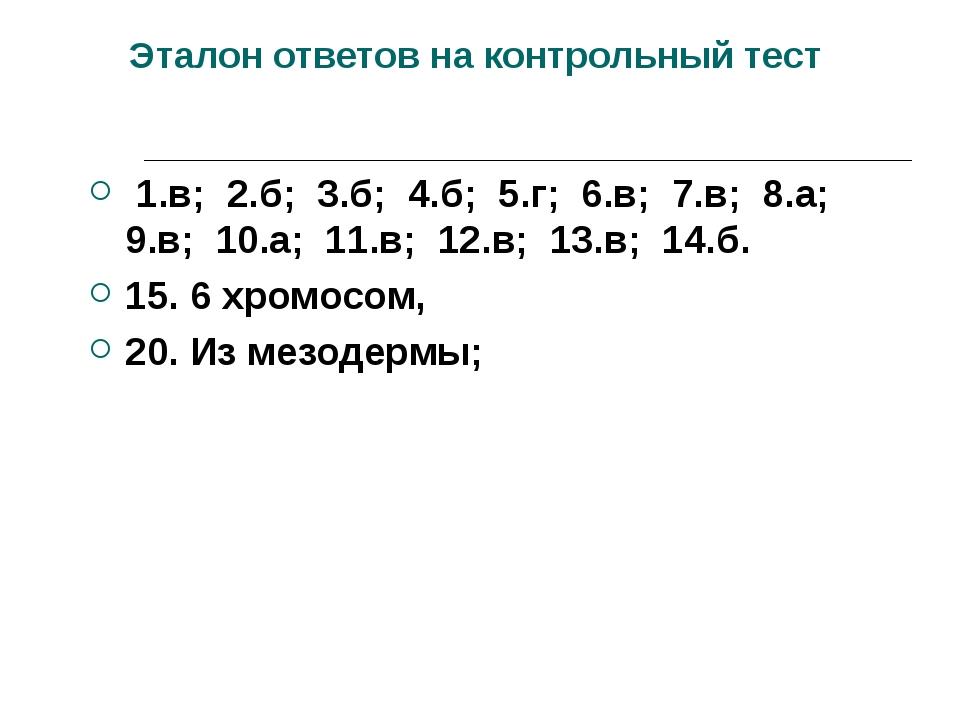 Эталон ответов на контрольный тест 1.в; 2.б; 3.б; 4.б; 5.г; 6.в; 7.в; 8.а; 9...