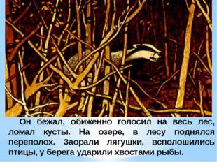 Он бежал, обиженно голосил на весь лес, ломал кусты. На озере, в лесу поднял