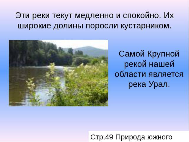 Эти реки текут медленно и спокойно. Их широкие долины поросли кустарником. Са...