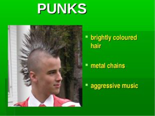 PUNKS brightly coloured hair metal chains aggressive music